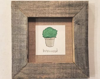 framed diminutive doode - boxwood