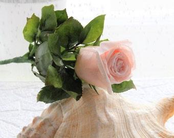 Clay flowers,Flower Arrangements,Cold porcelain,Real Touch Rose Arrangement,White Rose Arrangement,Cream Rose Arrangement,Rose Centerpiece
