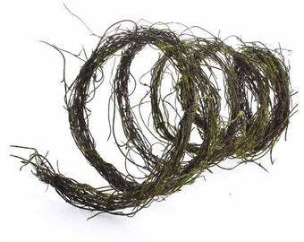 Twig Garland - Vine Green - 6 ft