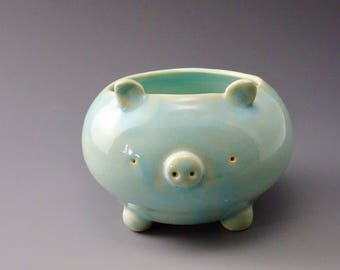 Blue pig with open top
