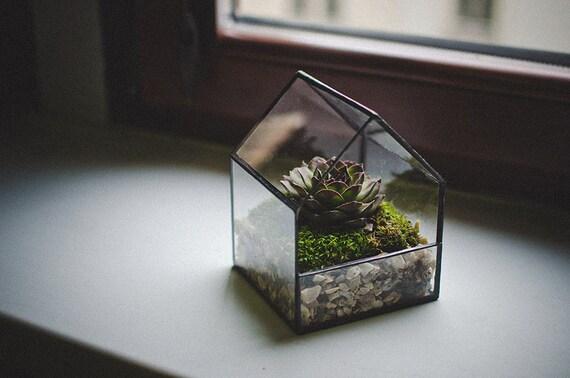 terrarium maison verre