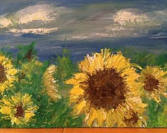 Sunflowers-Eastern Plains