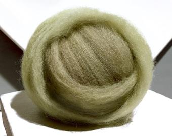 Lichen Green wool roving, Needle Felting wool, Spinning fiber, yellow green,  grey green roving