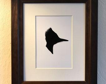Pileated Woodpecker Silhouette