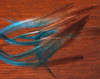 Brown Mocha Blue Emu Feathers Cruelty Free Craft Feathers Pack of 10 5-7""
