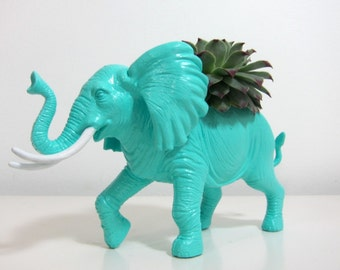 Winston the Elephant Planter & Succulent