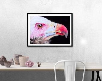 Bird Drawing, Bird Illustration, Wall Decor, Bird Gift, Bird Portrait, Birds, Vulture Drawing, Realistic Portrait, Animal Drawing