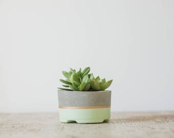 Mother's Day Gift for Her, Medium Concrete Planter, Seaside & Gold