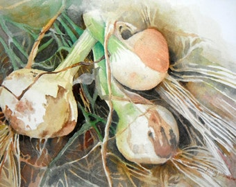Onions Original Watercolor Painting