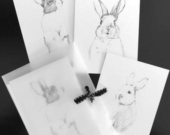 Notecards with envelopes - 3 pack of various images - Rabbit Sketchbook Series 2