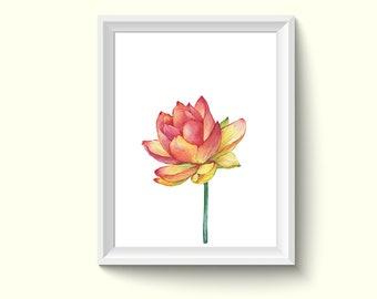 Lotus Flower Watercolor Painting Poster Art Print P466