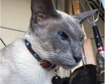 Cat Collar, Custom  Cat Collar, Custom Cat Collars, Pet ID Tag, Cat I.D collar, cat collar, rivet cat collar