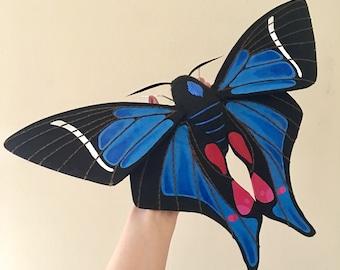 Blue Doctor Butterfly