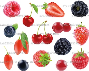 Digital EPS PNG JPG Different Berries, fruits, vector, clipart, silhouette, instant download