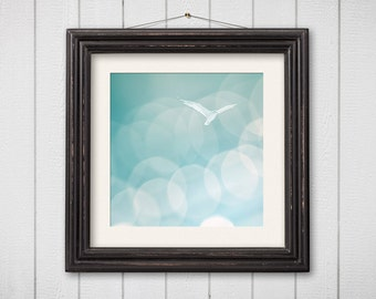 Bird Photography Seagull Nautical Decor Coastal Seaside Beach Photo Gull Wildlife Teal Blue Green Pastel Dreamy Whimsical Fine Art Montauk