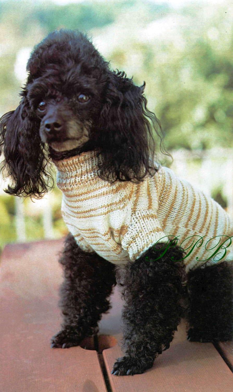 Knitted Dog Coat --- Small Dog Pattern --- PDF Knitting Pattern ...