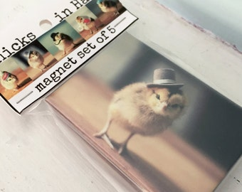 Chicks in Hats Refrigerator Magnets 5 Different Chickens Magnets Baby Animal Magnet Set Housewarming
