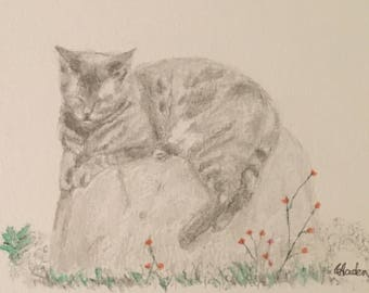Custom portrait of your pet made to order. Watercolour or pencil to suit tour preference.
