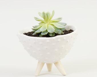 White Ceramic Planter Modern Spiky Planter ~ Indoor Plant Pot White Plant Pot Ceramic Bowl Ceramic Dish ~Handmade Planter Ceramic Plant Pot