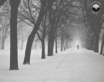 Winter Montréal print, Lafontaine Park, Urban, winter, snow