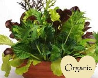 Lettuce Gourmet Mix Organic Non-GMO, 100+ Organic seeds, Lettuce Mix, Organic garden Seeds, Vegetable Seeds, Organic gardening seeds