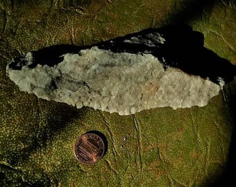 calcite and devonian fossil matrix//found in the black swamp region//calcite//fossils//devonian