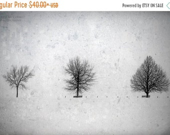 25% Memorial Day Sale Black and White Living Room Decor, Snow Scene, Winter Trees, Silbouttes, Bedroom Decor