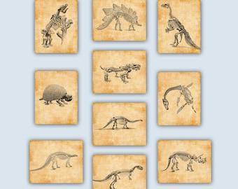 Dinos Nursery, Dinosaur Art, Dinosaur Print, Dinosaur Art, Dinosaur Decor,  Dinosaur Party, Dino Poster, Kids Room Decor,Educational Prints