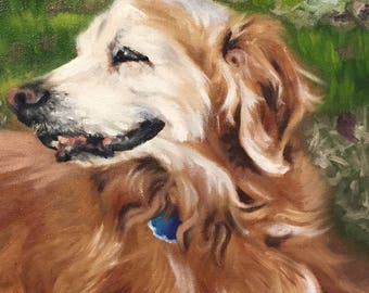 Custom Pet Portrait (Oil)