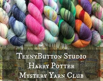 May - Harry Potter Mystery Yarn Club - Hand Dyed Fingering Yarn - Pick Your Base - Sock Yarn - Merino, BFL, Stellina Fingering Weight