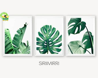 Set of 3 Tropical Leaf Print Set Monstera Leaf Palm Banana Leaf Foliage Green Leaves Wall Art Tropical Decor Botanical Coastal Art Desert
