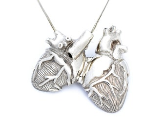 White Bronze Anatomical Heart Locket