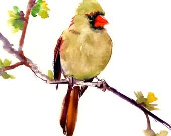 Cardinal Bird, art, painting, original watercolor, bird art, bird painting, northern cardinal, cardinal bird artwork