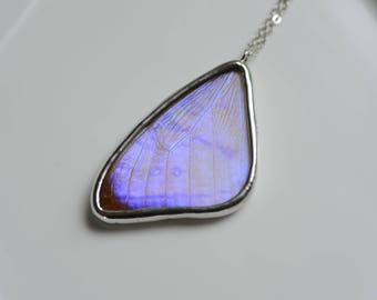 Real Butterfly Wing Necklace. Real Butterfly Wing Jewelry. Real Butterfly Wing Pendant. Morpho Sulkowski Butterfly Jewelry. Boho Style.