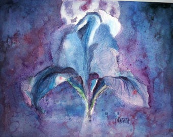 watercolor blue purple iris in the dark