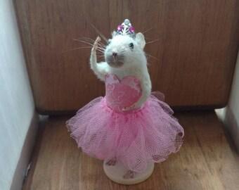 Taxidermy Mouse Ballerina