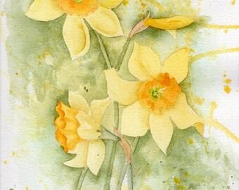 DAFFODILS original watercolor SFA