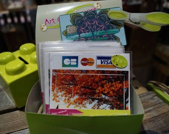 Autumn forest credit card stickers