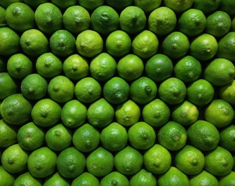 Kitchen Decor, Bar Decor, Modern Home Decor, Kitchen Art Print, Fruit Print, Citrus Print, Green Limes,