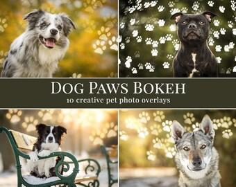 Dog Paws Bokeh photo overlays, pet photo overlays, animal photo overlays for Photoshop, lights overlays, bokeh overlays