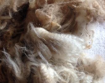 Beige Alpaca Fleece Spinning Fiber from Colorado Ancient Treasures