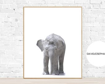 Baby Elephant Print, Nursery Wall Art, Baby Animal Print, Digital Download, Minimalist Print, Elephant Wall Art, African Print, Modern Decor