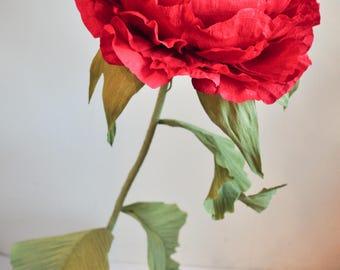Giant crepe paper flower Peony