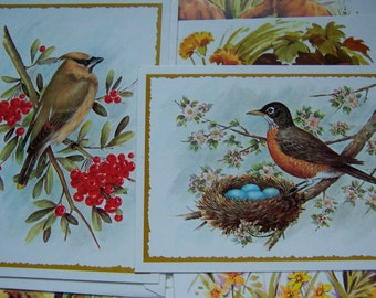 amvet occasion greeting cards