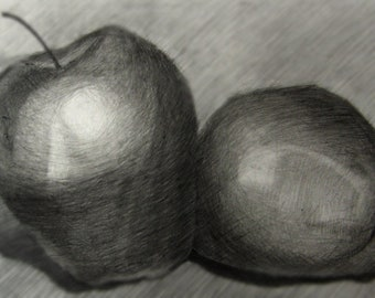 Still Life Two Apples Black And White Pencil Drawing