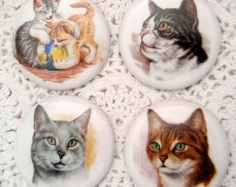 4 Older Studio Buttons Cats Cat Kittens Kitties Tabby Gray Black White Ceramic Cat Button