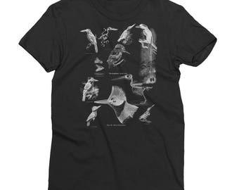Women's Kingfisher Short Sleeve T-Shirt