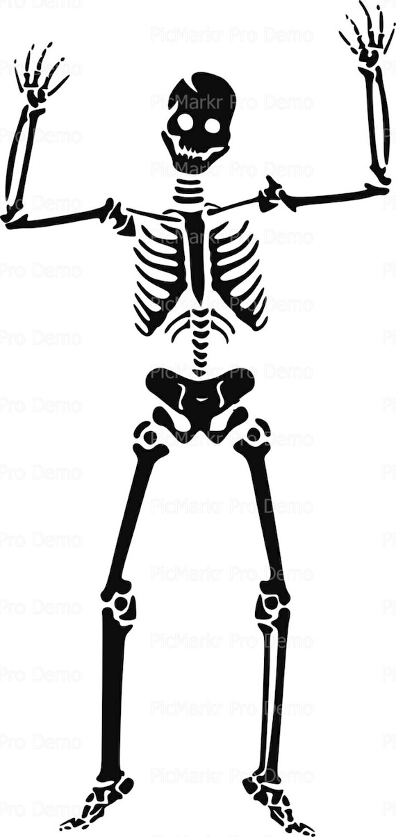 Skeleton Halloween - Edible Cake and Cupcake Topper For Birthday's and Parties! - D5856