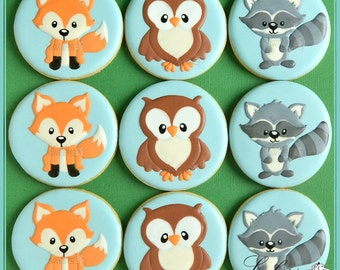 Woodland Animal Cookies, Fox, Owl and Raccoon (quantity: 12), birthday or baby shower favour, cute