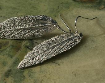 Fine Silver Dangle Sage Leaf Earrings on sterling silver french hooks